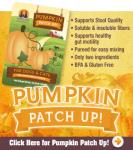 pumpkin-h