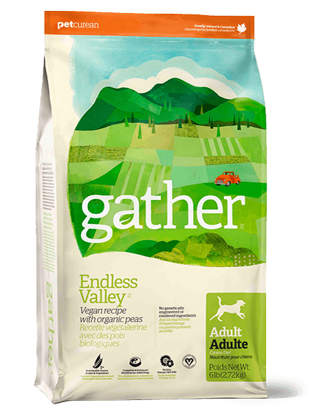 gather-endless-valley-dogs-1.png