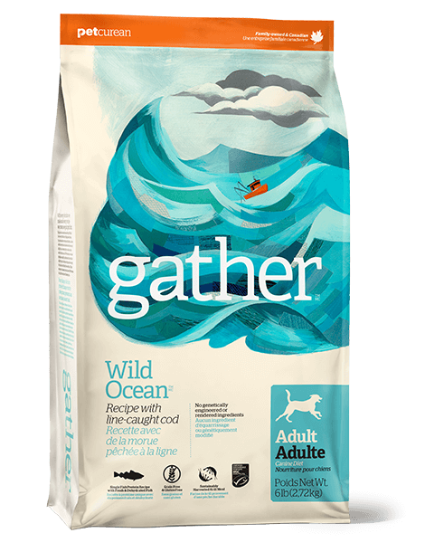 gather-wild-ocean-dogs-1.png